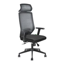 Компьютерное кресло для руководителя RCH A 755 Чёрная сетка